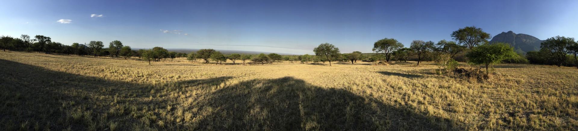 Südafrika15_0600